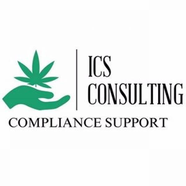 ICS Consulting Services