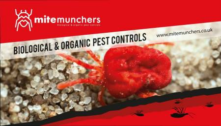 Mite Munchers Ltd