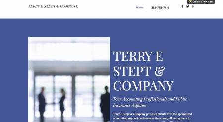 Terry E Stept Co, CPA